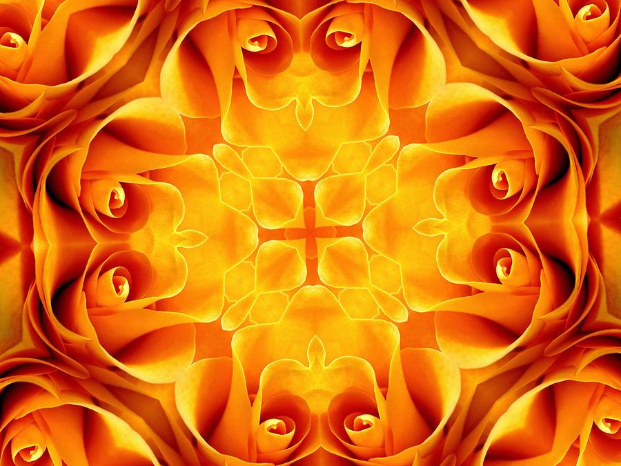 Kaleidoscope Digital Art - Nature Kaleidoscope 1 by Rhonda Barrett