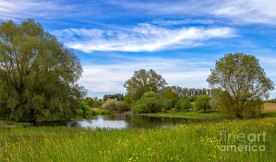 Lake Photograph - Nature Preserve Segete by Bernd Laeschke