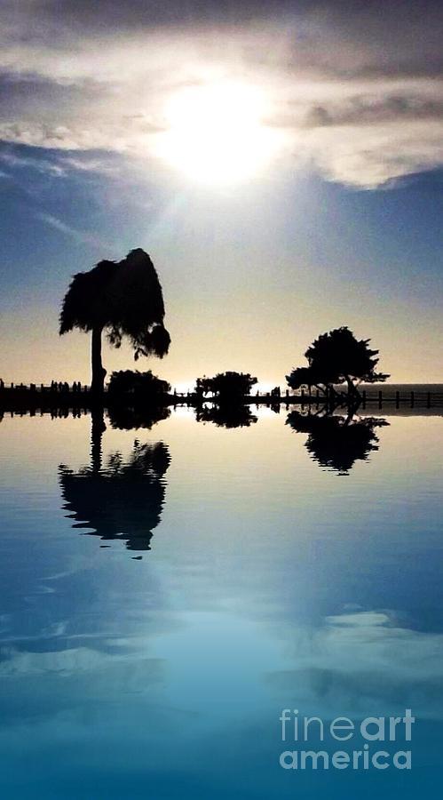 Nature Simplicity Photograph