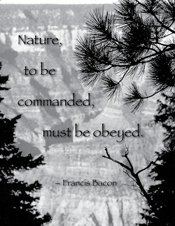Quotation Photograph - Nature To Be Commanded by Mike Flynn