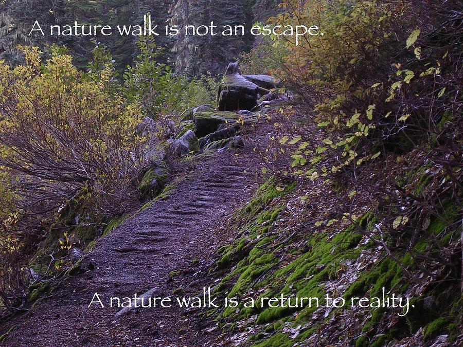 Merritt Lake Photograph - Nature Walk by Tom Trimbath