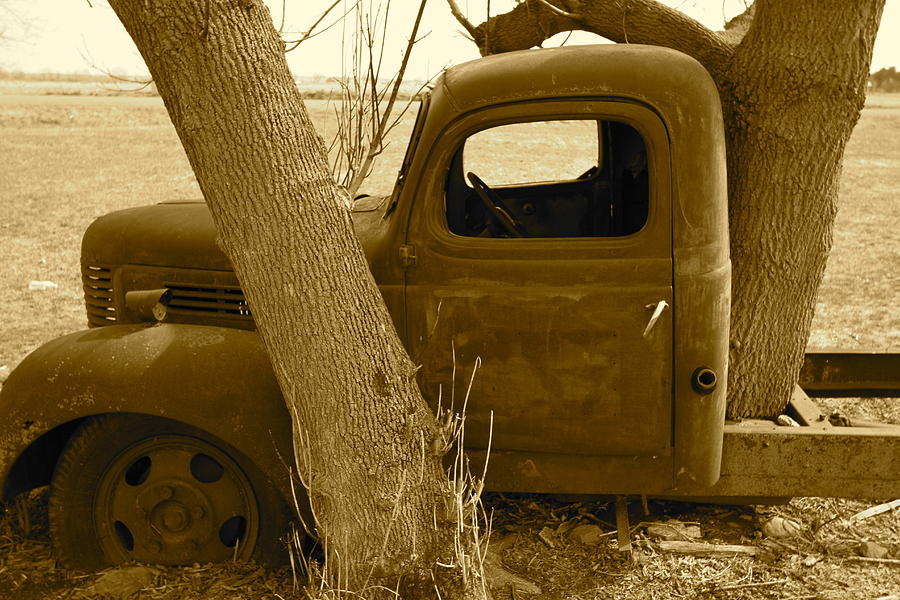 Old Truck Photograph - Nature Wins by Artist Orange