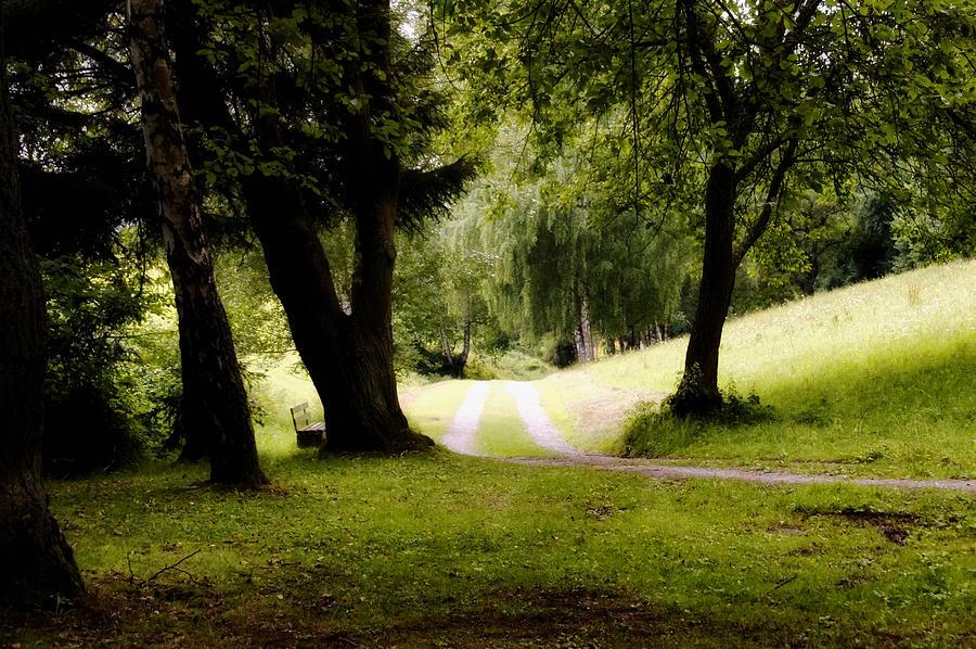Landscape Photograph - Nature Wonderland by Mountain Dreams