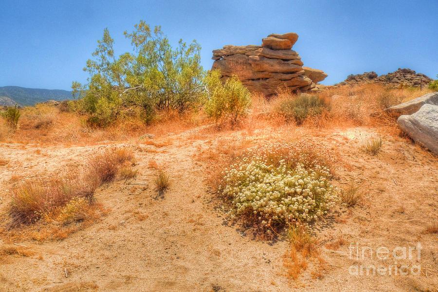 California Photograph - Natures Cairn by Deborah Smolinske
