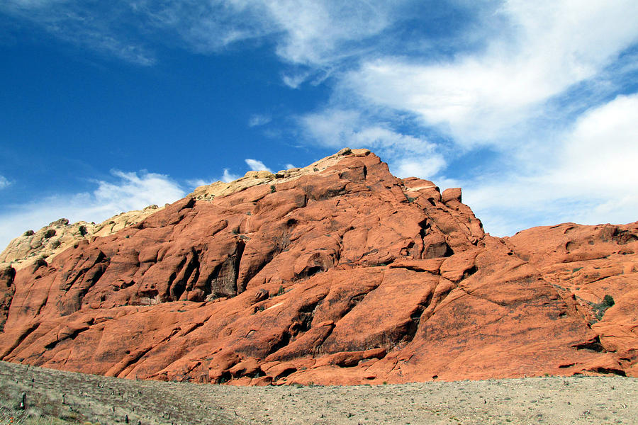 Red Rock Canyon Photograph - Natures Colors by Andrea Dale