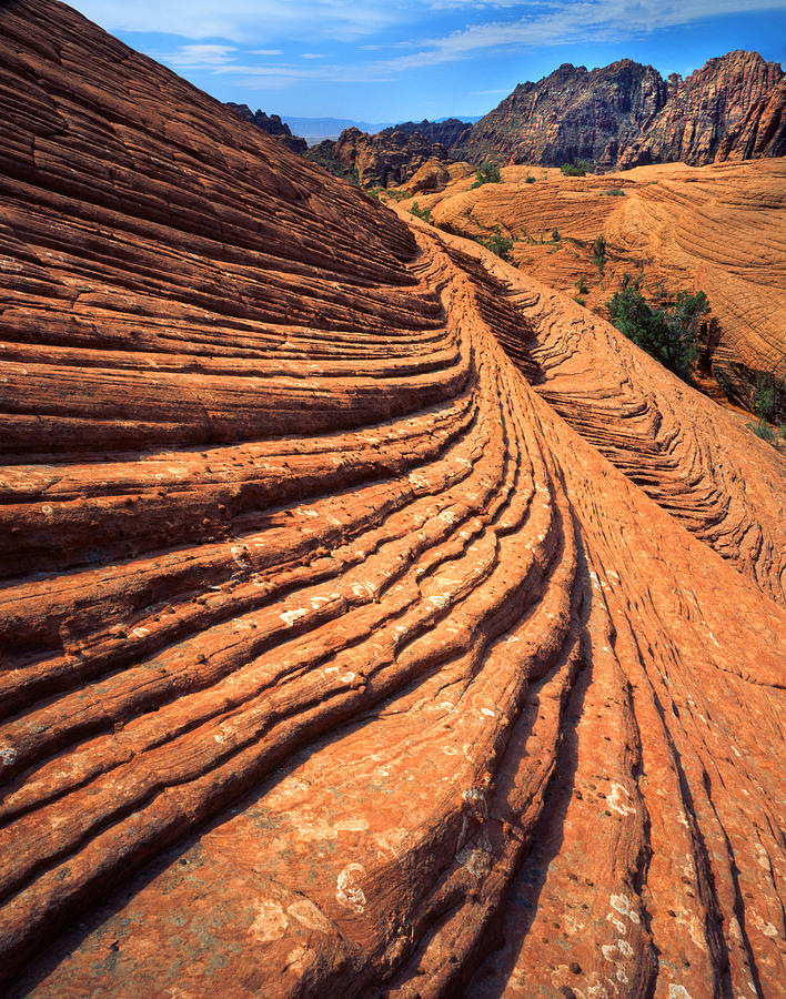Snow Canyon State Park Photograph - Natures Concentric Circles by Ray Mathis