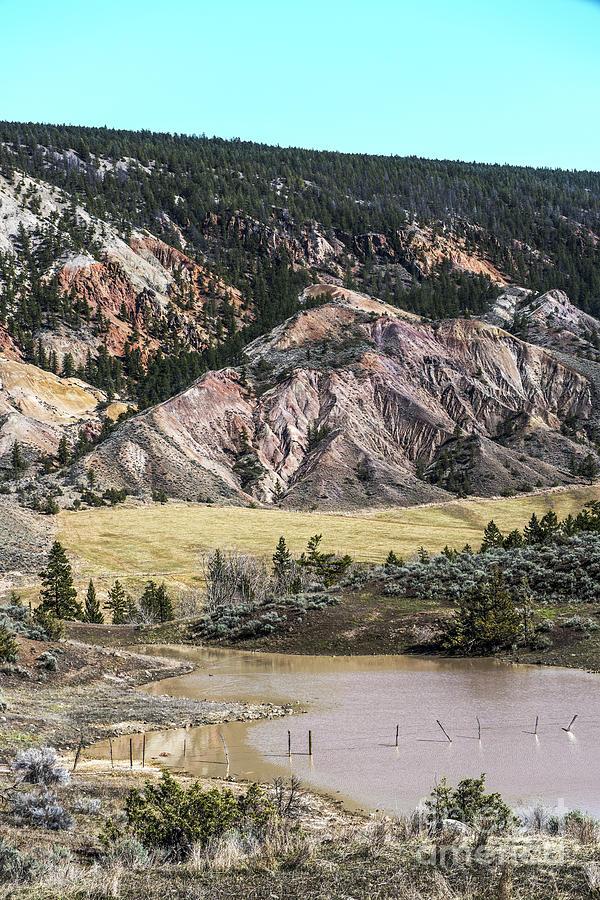 Natures Palette Photograph
