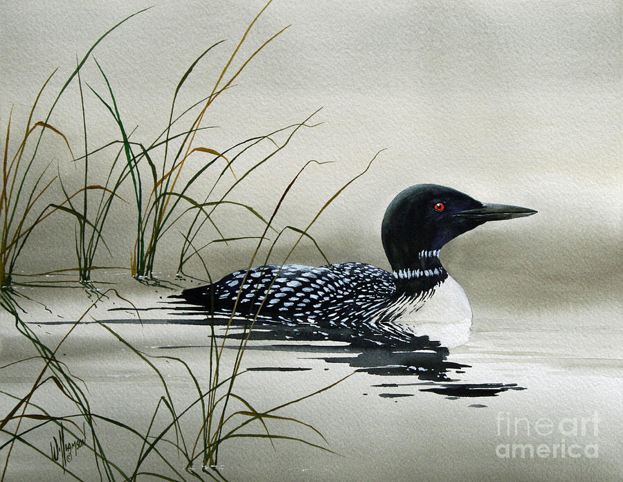 Loon Prints Painting - Natures Serenity by James Williamson
