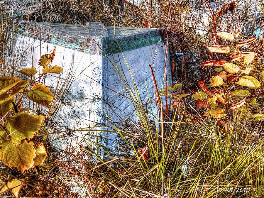 Autumn Photograph - Natures Storage by Richard Bean