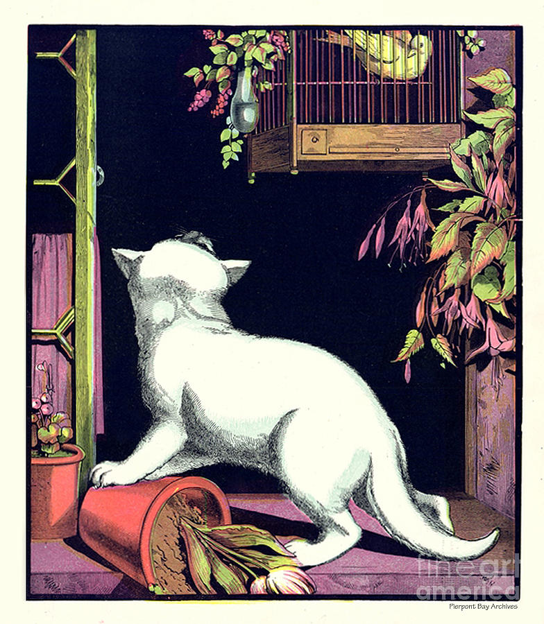 Naughty Cat Eyes A Yellow Bird In Cage Digital Art by Pierpont Bay Archives