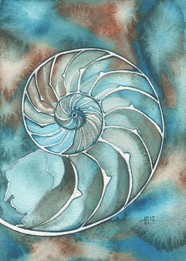Shell Painting - Nautilus by Tamara Phillips