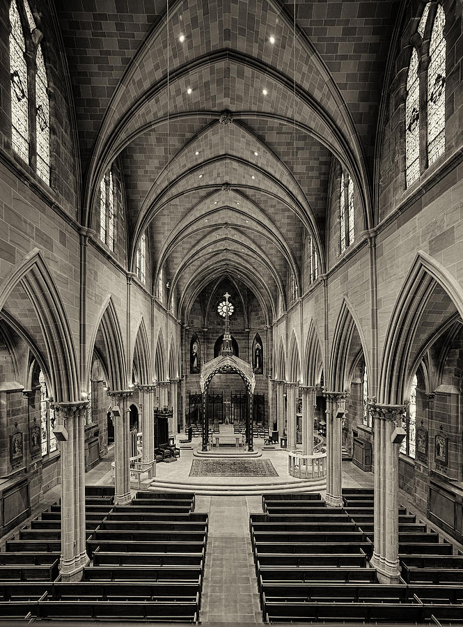 St Joseph Cathedral Photograph - Nave IIi by Dick Wood