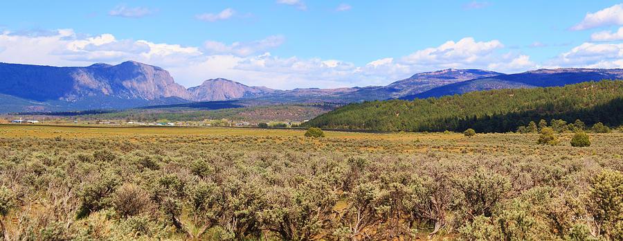 Roena King Photograph - Near Chama New Mexico by Roena King