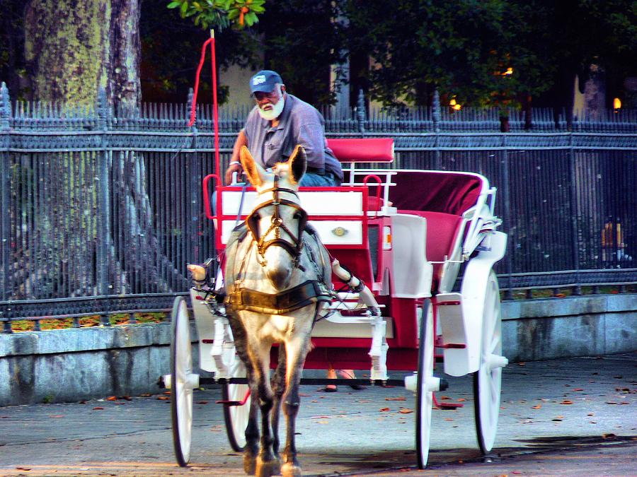 Buggy Ride Photograph - Need A Ride by Anthony Walker Sr
