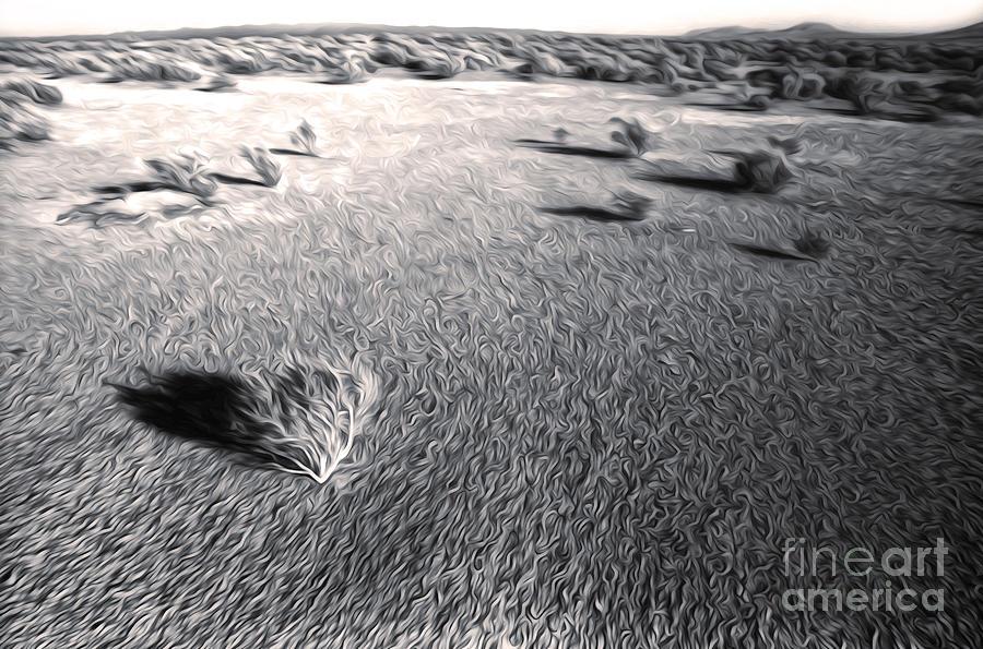 Desert Painting - Needles Desert by Gregory Dyer