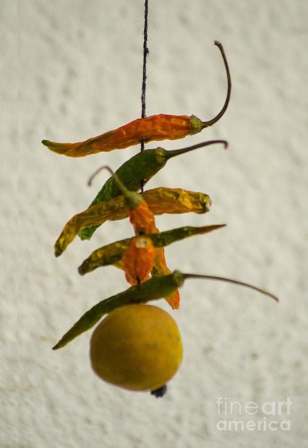 Lemon Photograph - Neembu Mirch  Lemon N Chillies by Vineesh Edakkara