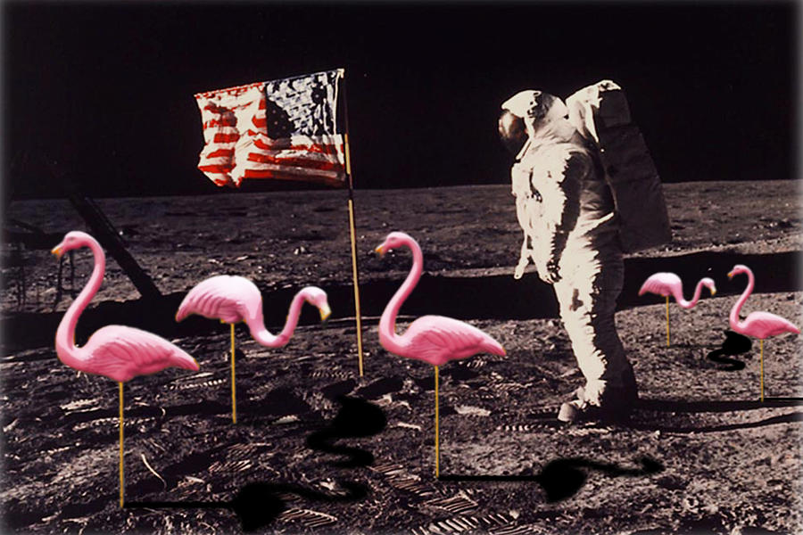 Apollo 11 Painting - Neil Armstrong And Flamingos On The Moon by Tony Rubino