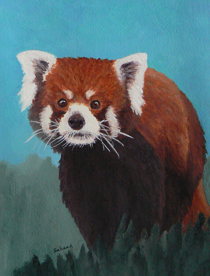 Red Panda Painting - Nepalese Forest Dweller by Margaret Saheed