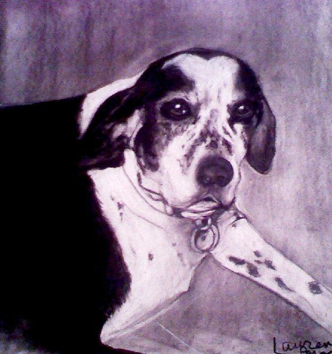 Doggie Drawing - Nero by Lauren  Pecor