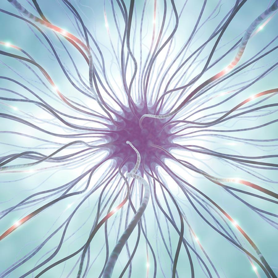 Nerve Cell, Artwork Digital Art by Ktsdesign