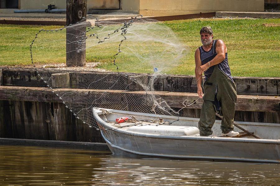 Net Fishing In Delcambre La Photograph by Gregory Daley  MPSA