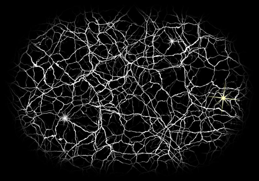 Brain Digital Art - Neural Synapses Radiograph Of An Idea by Daniel Hagerman