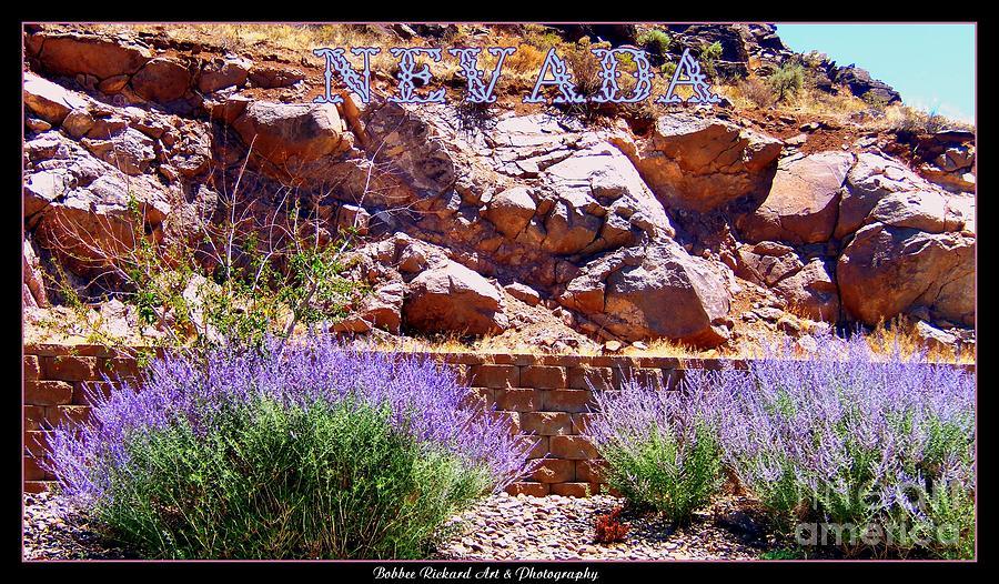 Prints Photograph - Nevada by Bobbee Rickard