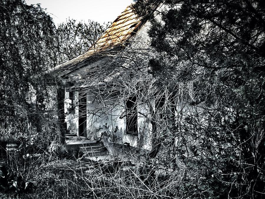 Never Again Photograph - Never Again... by Marianna Mills