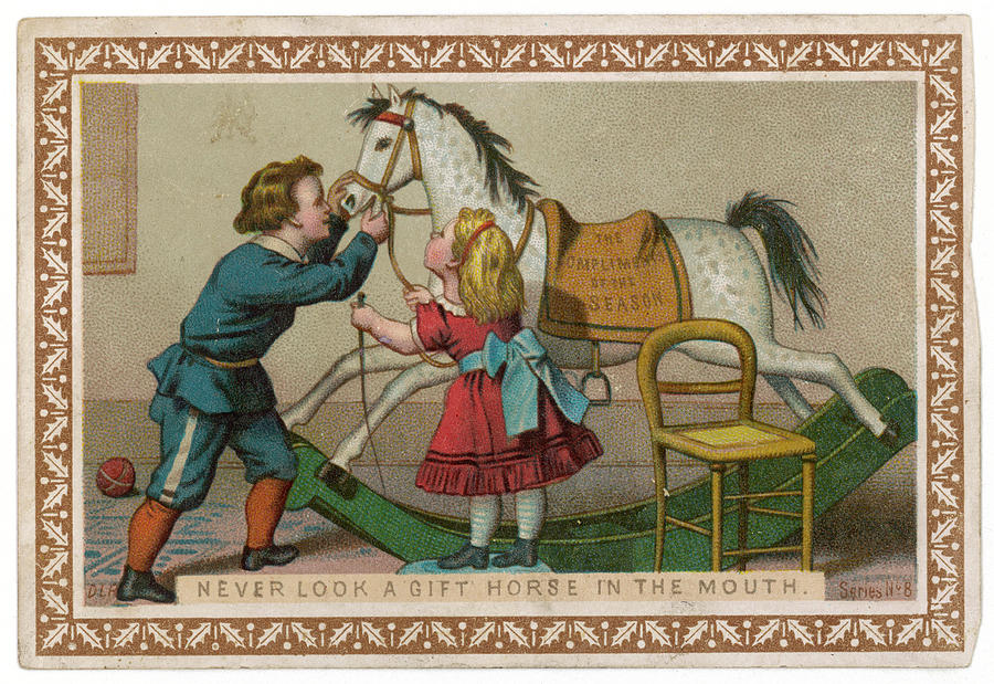 Proverb Drawing - Never Look A Gift Horse In The  Mouth by Mary Evans Picture Library