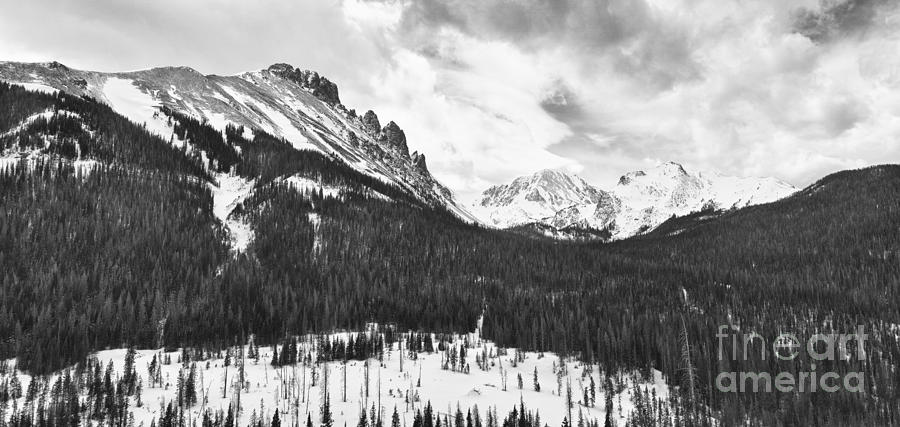 Never Summer Wilderness Photograph - Never Summer Wilderness Area Panorama Bw by James BO  Insogna