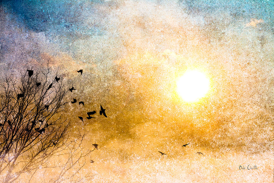 Orsillo Photograph - New Day Yesterday by Bob Orsillo