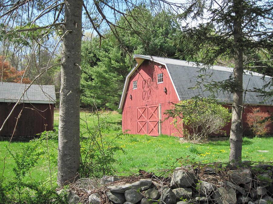 Barn Photograph - New England Barn by Marjorie Tietjen