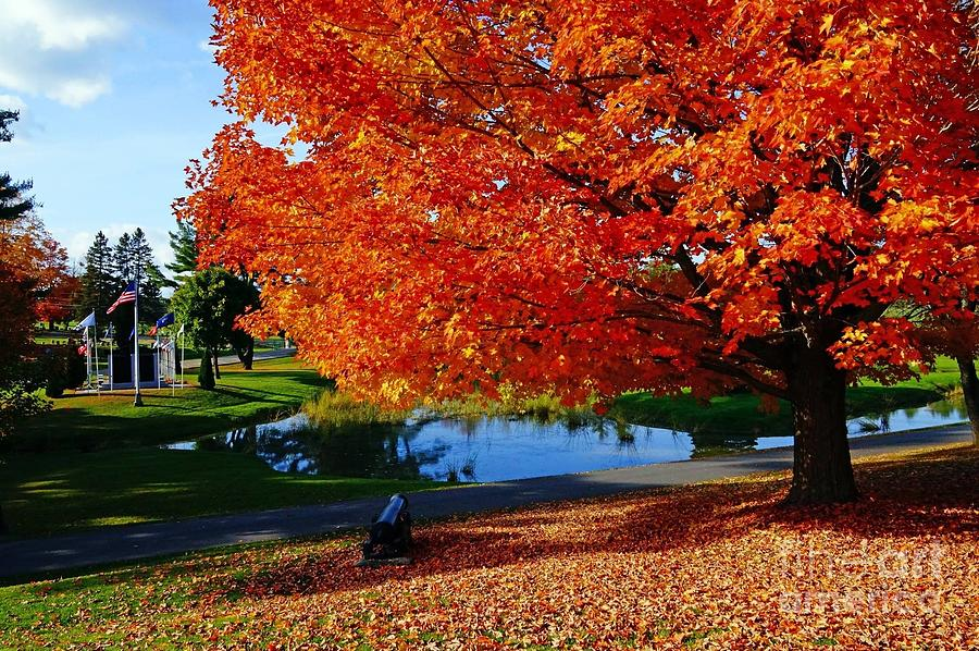 Landscape Photograph - New England Fall  by Melissa C