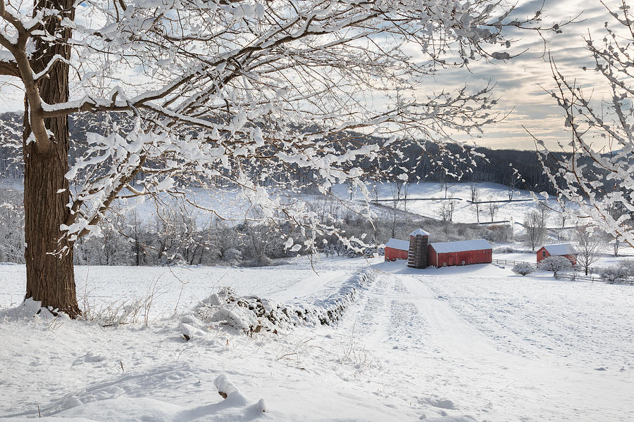 Barns Photograph - New England Winter Farms by Bill Wakeley