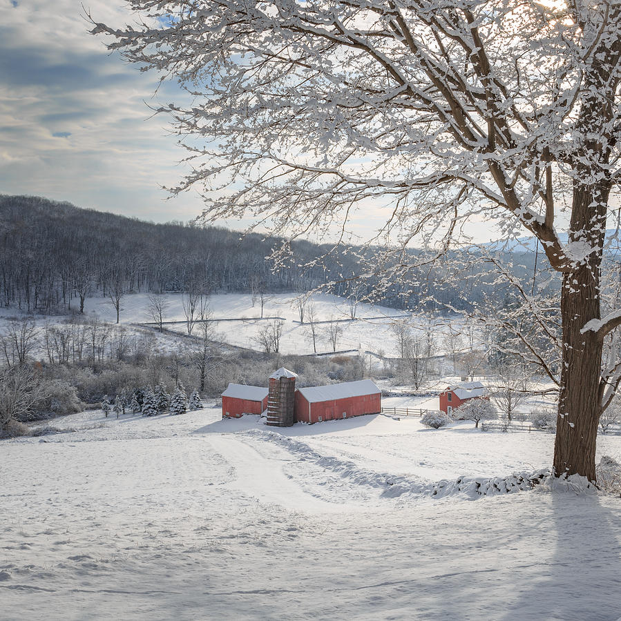 Square Photograph - New England Winter Farms Morning Square by Bill Wakeley
