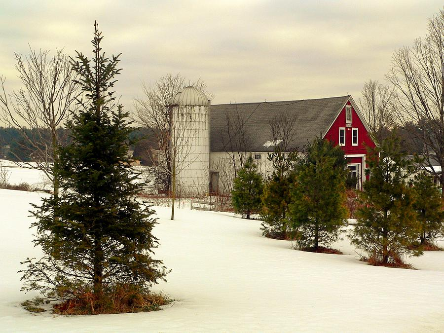 Farm Photograph - New Hampshire Barn by Janice Drew