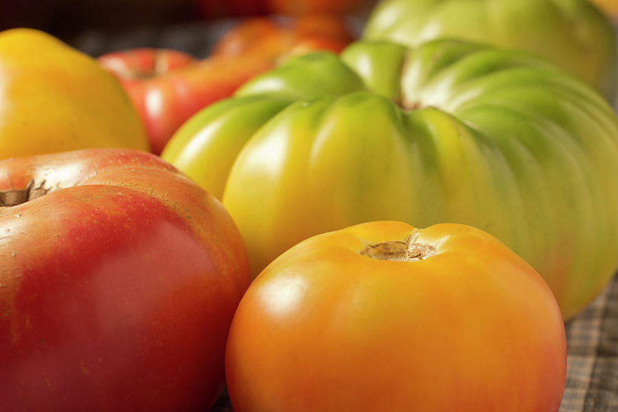 New Jersey Heirloom Tomatoes Photograph by Brian Yarvin