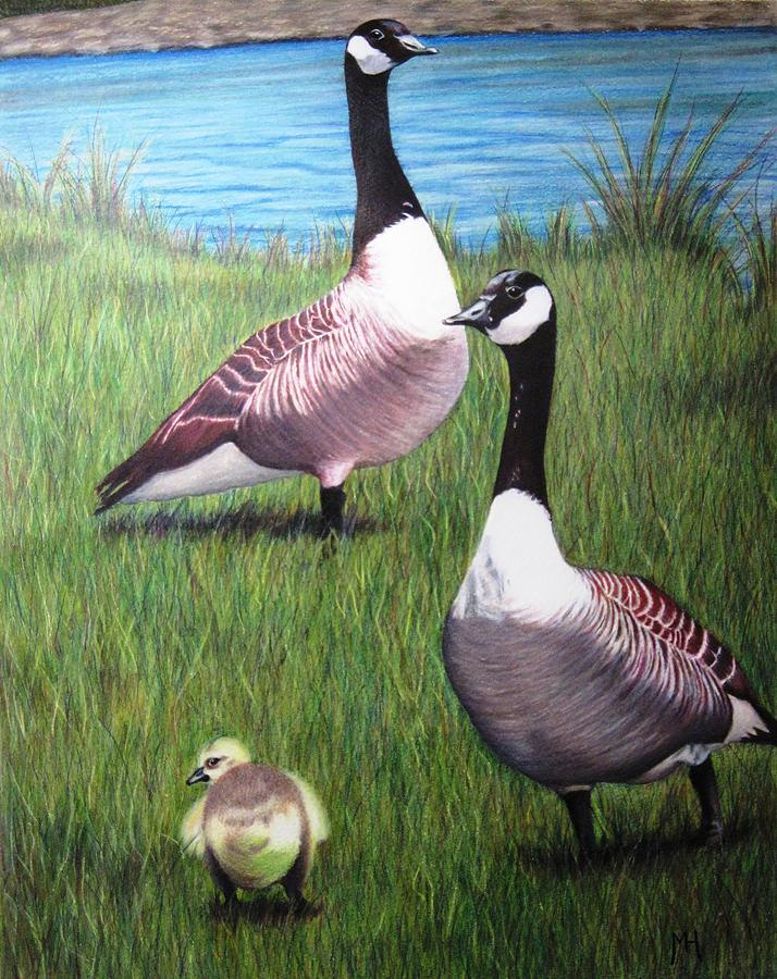 Canada Geese Painting - New Kid On The Block by Michelle Harrington
