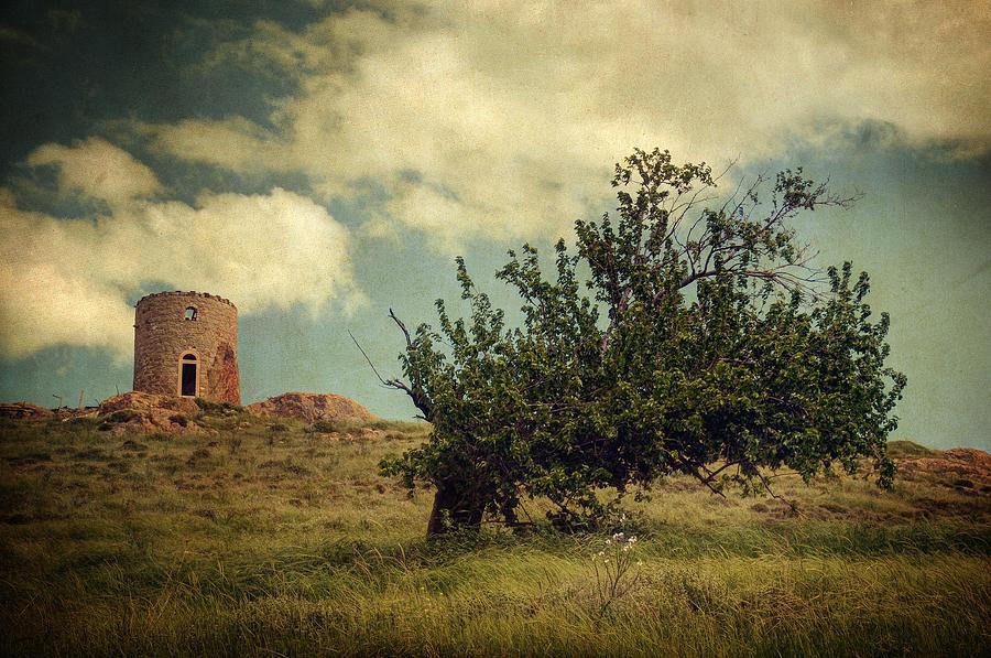 Nature Photograph - New Memories by Taylan Apukovska
