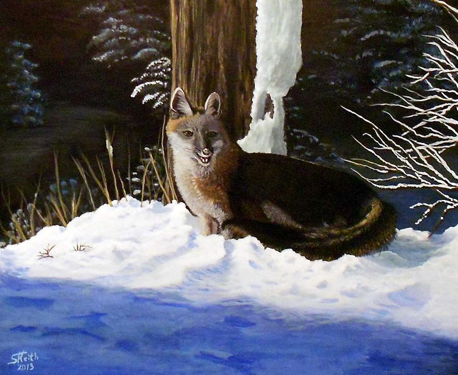 Fox Painting - New Mexico Swift Fox by Sheri Keith