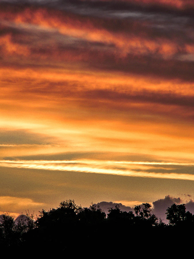 Dusk Photograph - New Normal by Christy Usilton