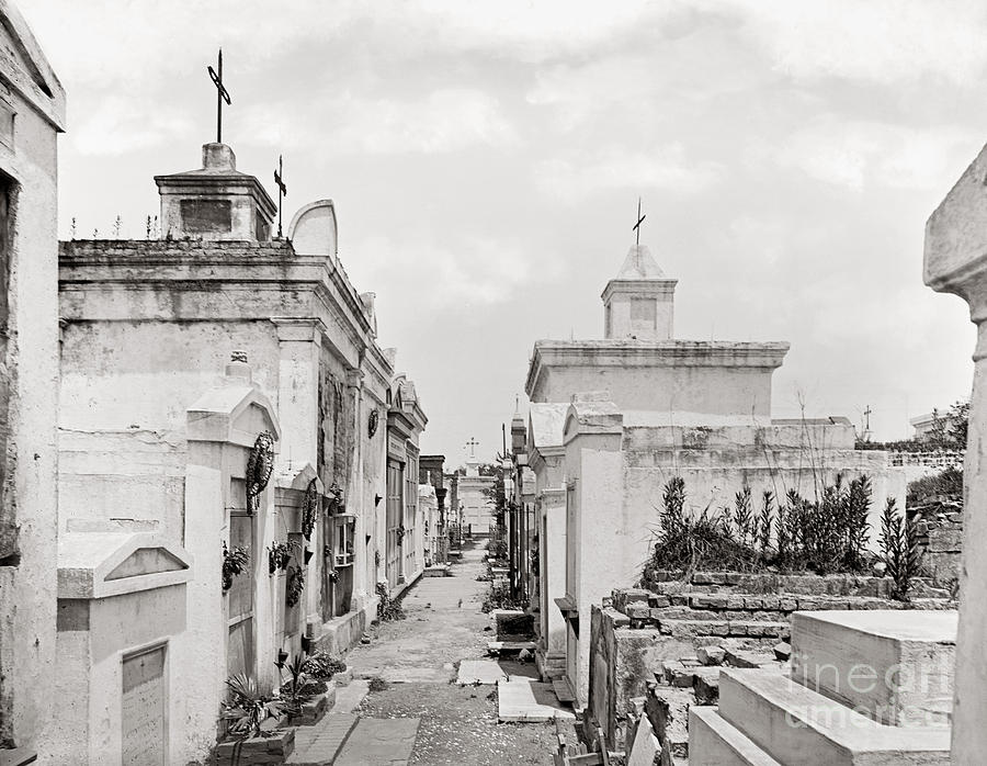1901 Photograph - New Orleans: Cemetery by Granger