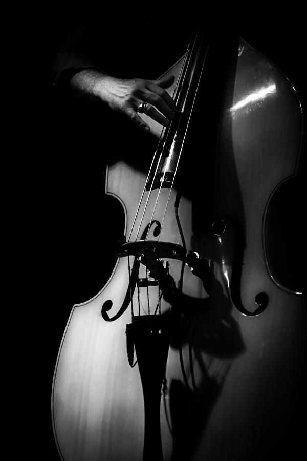 Jazz Photograph - New Orleans Strings by Brenda Bryant