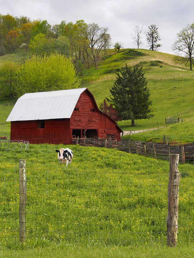 Red Barn Photograph - New Red Paint by Mike McGlothlen