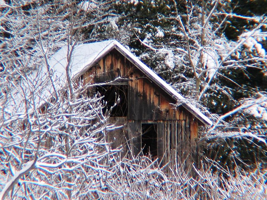 Landscape Photograph - New Snow Old Barn by Will Boutin Photos