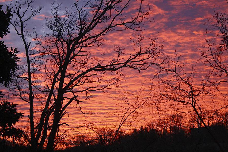 Sunrise Photograph - New Year Eve Sunrise by Teresa Mucha