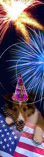 Bookmark Photograph - New Year Sheltie # 500 by Jeanette K