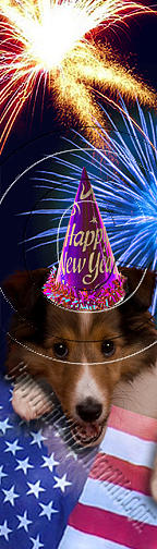 Bookmark Photograph - New Years Sheltie # 499 by Jeanette K