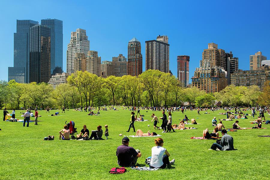 New York City, Central Park Photograph by Sylvain Sonnet