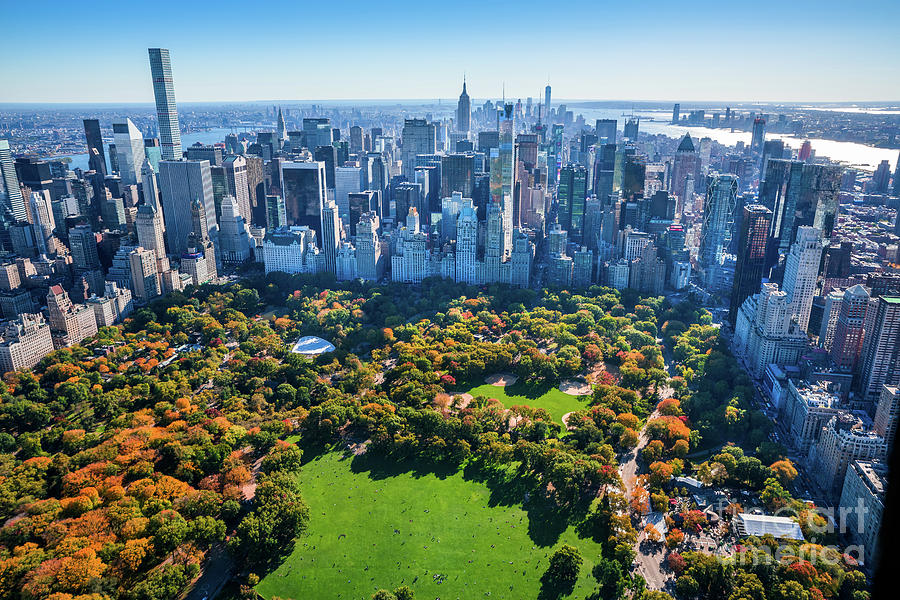 New York City Skyline, Central Park Photograph by Dszc